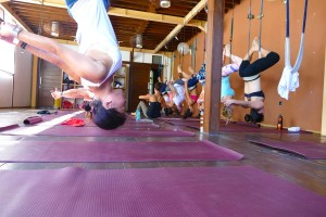 Fly High Yoga